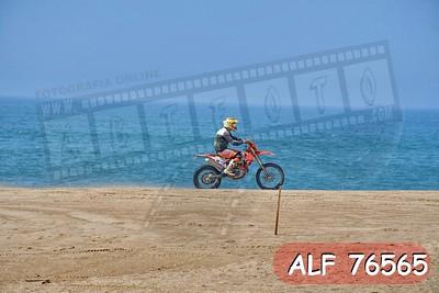 ALF 76565