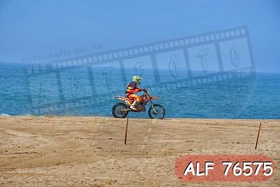ALF 76575