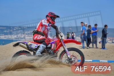 ALF 76594