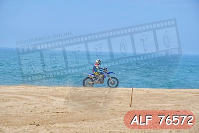 ALF 76572
