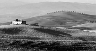 Eileen Autumn Ploughed Fields