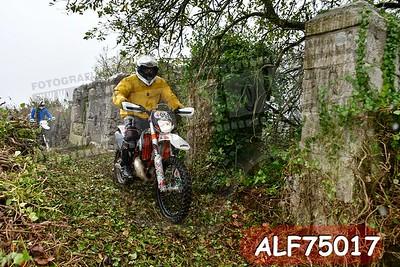 ALF75017