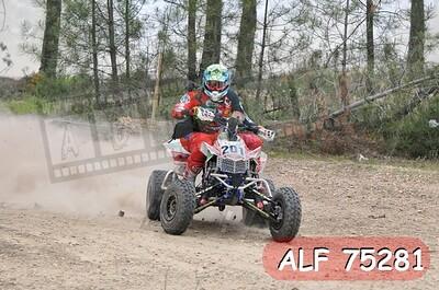 ALF 75281