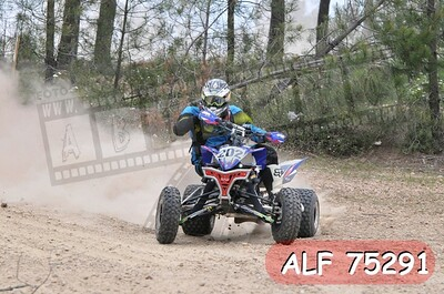 ALF 75291