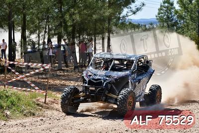 ALF 75529
