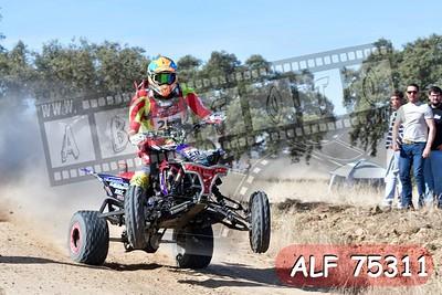 ALF 75311