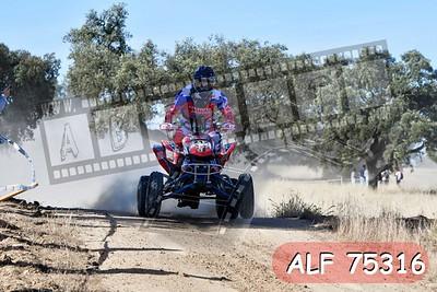 ALF 75316