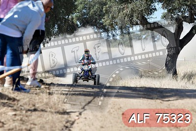ALF 75323