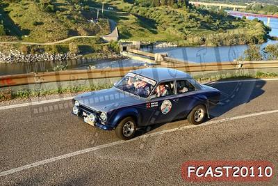 FCAST20110