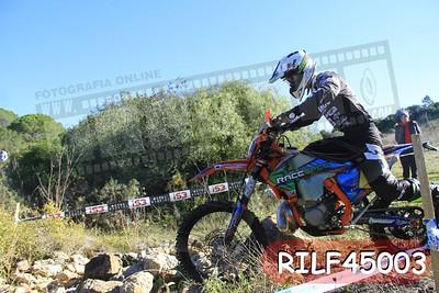 RILF45003