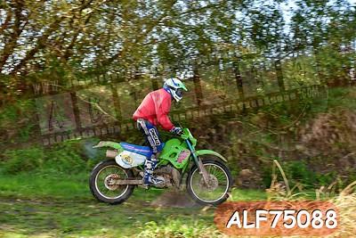 ALF75088