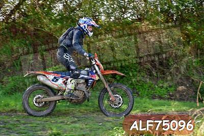 ALF75096