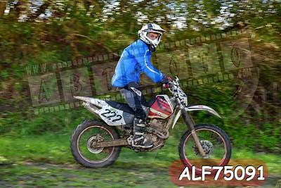 ALF75091