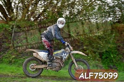 ALF75099