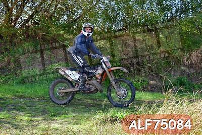 ALF75084