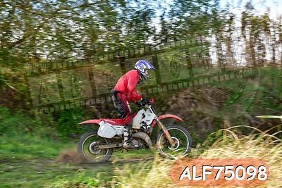 ALF75098