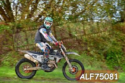 ALF75081