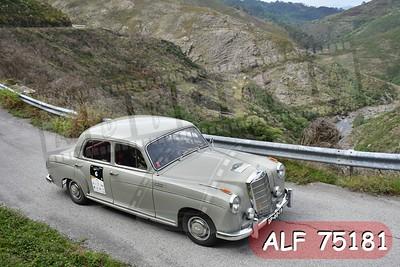 ALF 75181