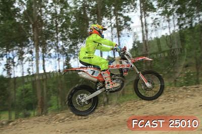 FCAST 25010
