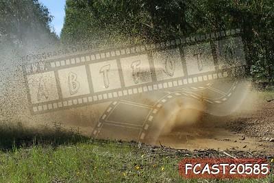FCAST20585