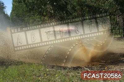 FCAST20586