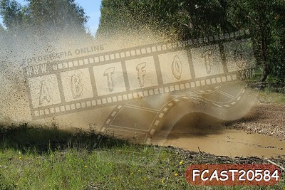 FCAST20584