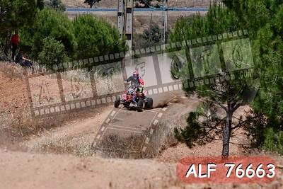 ALF 76663