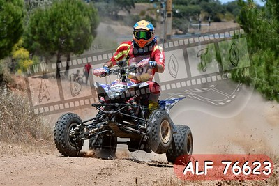 ALF 76623