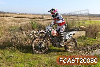 FCAST20080