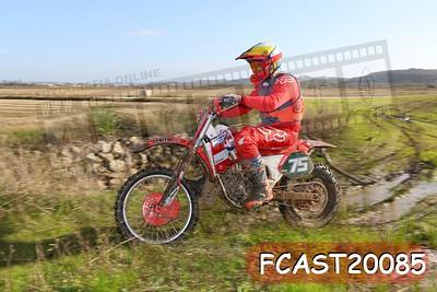 FCAST20085