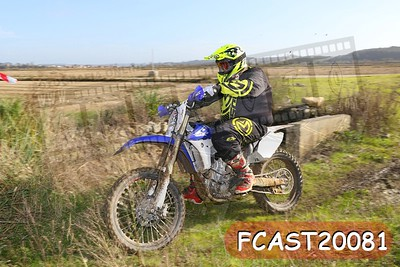 FCAST20081
