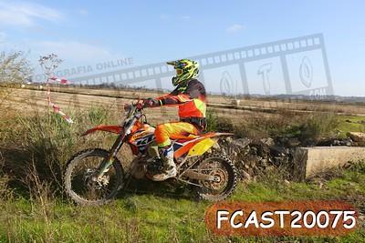 FCAST20075