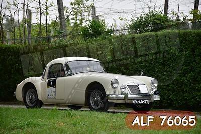 ALF 76065