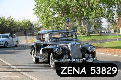 ZENA 53829