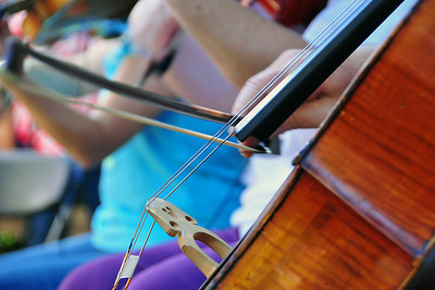 Bow & StringPhotographers Name : Jim ArnoldPhotographers Location : Larkspur, CATo vote in favor for this photo, simply add a comment below. You can also share this photo on Facebook and Twitter using the buttons above.