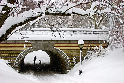 Tunnel Cover—New York City\'s Central ParkPhotographers Name : Gary RickettsPhotographers Location : Hoover, ALTo vote in favor for this photo, simply add a comment below. You can also share this photo on Facebook and Twitter using the buttons above.