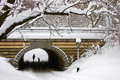 Tunnel Cover—New York City Central ParkPhotographers Name : Gary RickettsPhotographers Location : Hoover, ALTo vote in favor for this photo, simply add a comment below. You can also share this photo on Facebook and Twitter using the buttons above.