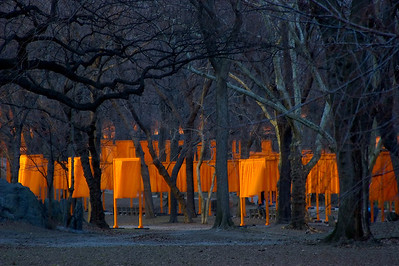 "Light and Dark—New York City Central Park \'The Gates""Photographers Name : Gary RickettsPhotographers Location : Hoover, ALTo vote in favor for this photo, simply add a comment below. You can also share this photo on Facebook and Twitter using the buttons above."