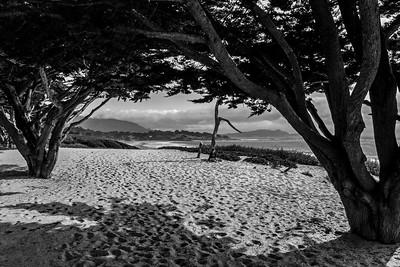 Carmel Beach - Kath Pieri