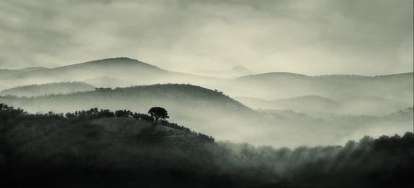 SteveH - Andalucian Mist