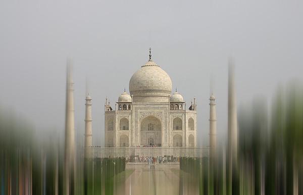 Jackie Taj Mahal