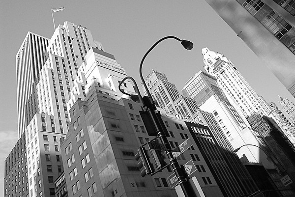 Neil Macindoe New York New York