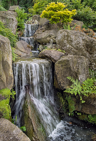 Ralph Waterfall at Wisley