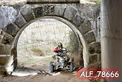 ALF 78666