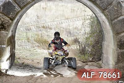 ALF 78661