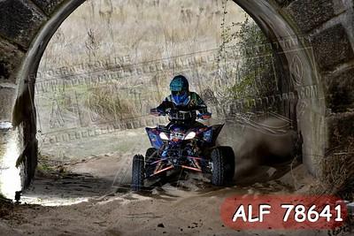 ALF 78641