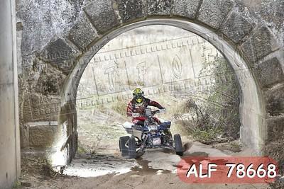 ALF 78668