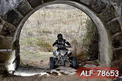 ALF 78653