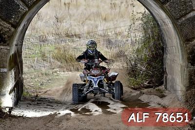 ALF 78651