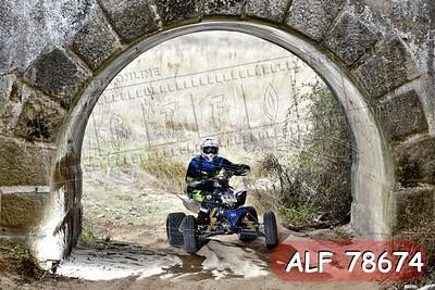 ALF 78674